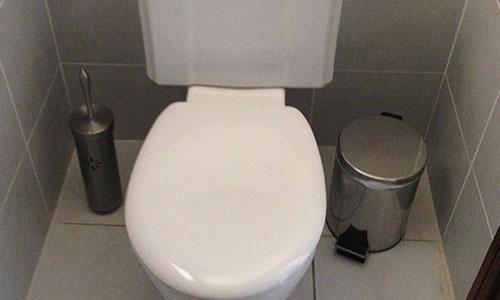 photo de toilette déboucher par un furet de plomberie.